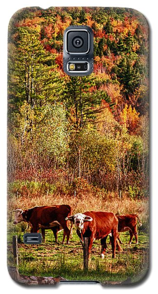 Galaxy S5 Case featuring the photograph Cow Complaining About Much by Jeff Folger