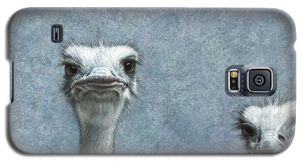 Ostriches Galaxy S5 Case by James W Johnson