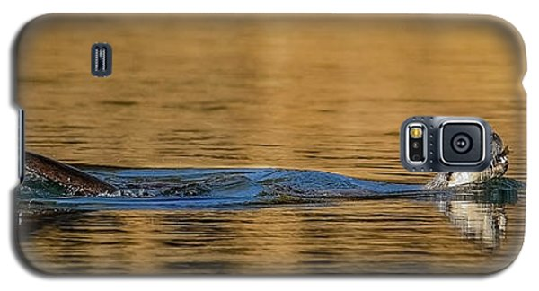 Galaxy S5 Case featuring the photograph Otter Catch by Yeates Photography
