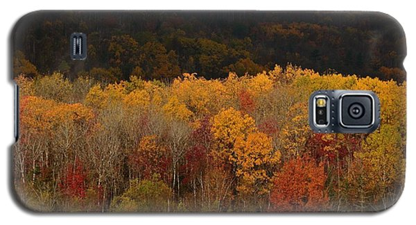 Otter Creek Road Galaxy S5 Case by Paul Noble