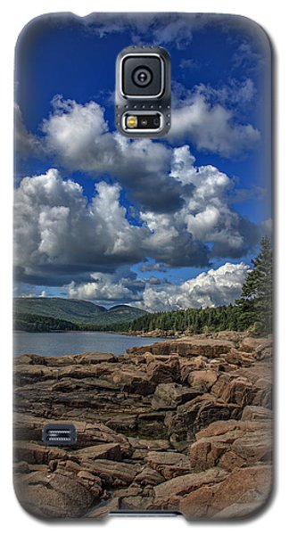 Otter Galaxy S5 Case - Otter Point Afternoon by Rick Berk