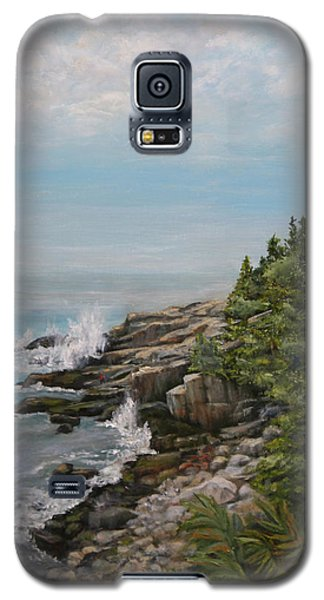 Otter Point - New England Galaxy S5 Case by Sandra Nardone