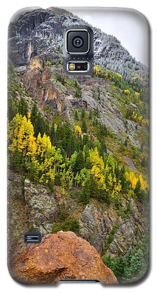 Ouray Canyon Fall Color Galaxy S5 Case