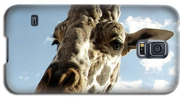 Out Of Africa Girraffe 2 Galaxy S5 Case