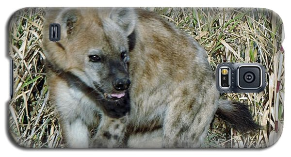 Out Of Africa  Hyena 2 Galaxy S5 Case