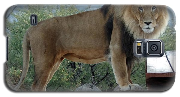 Out Of Africa  Lion 1 Galaxy S5 Case