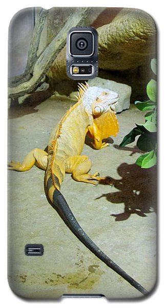 Out Of Africa Orange Lizard 2  Galaxy S5 Case