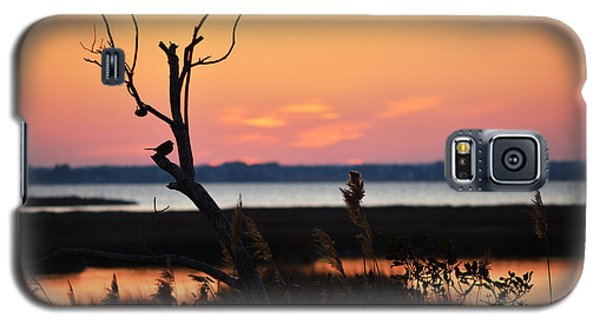 Galaxy S5 Case featuring the photograph Ocean City Sunset Out On A Limb by Bill Swartwout