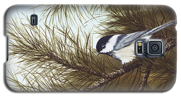 Out On A Limb Galaxy S5 Case by Rick Bainbridge