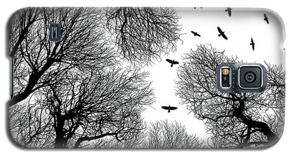 Branch Galaxy S5 Case - Out To The Open by Petri Damst??n