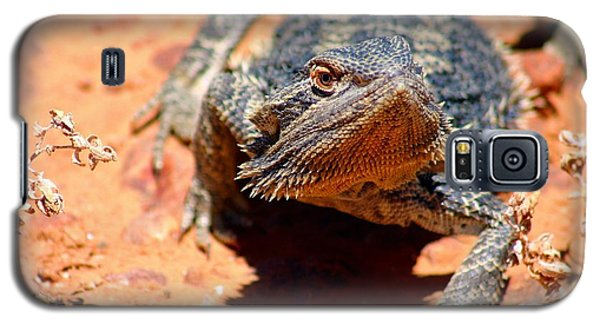 Galaxy S5 Case featuring the photograph Outback Lizard 2 by Henry Kowalski