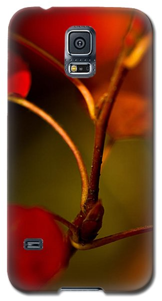 Galaxy S5 Case featuring the photograph Outgrowth by Haren Images- Kriss Haren