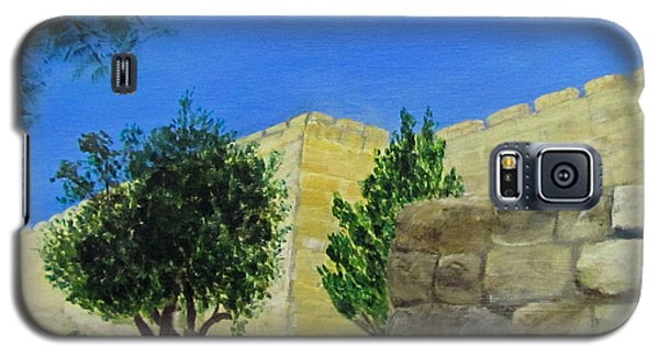 Outside The Wall - Jerusalem Galaxy S5 Case