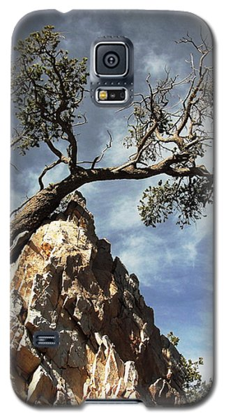 Galaxy S5 Case featuring the photograph Hung Over by Natalie Ortiz