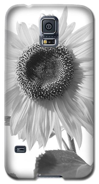 Over Looking The Garden Galaxy S5 Case