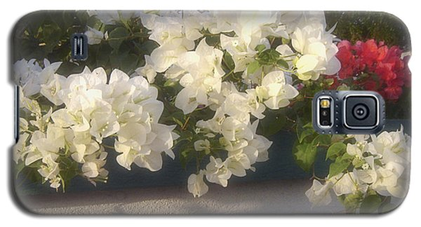 Galaxy S5 Case featuring the photograph Overdene Gardens by Debi Dmytryshyn
