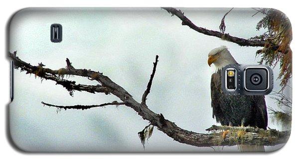 Overseeing Dinner Galaxy S5 Case