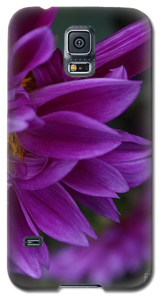 Overshadowed Galaxy S5 Case by Geri Glavis