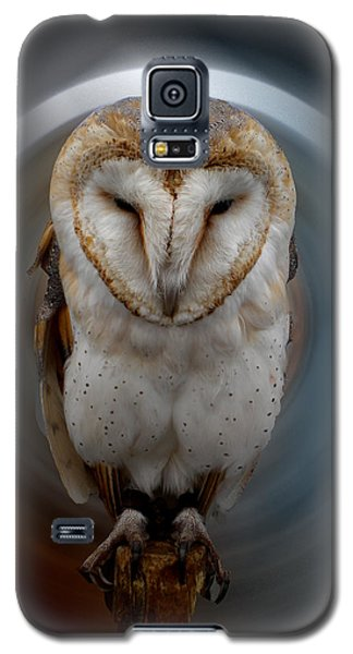 Owl Alba  Spain  Galaxy S5 Case
