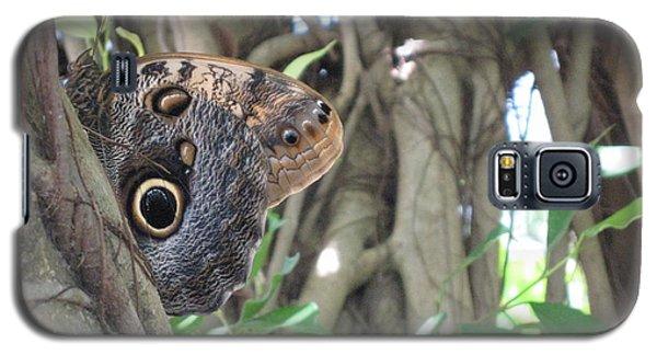 Owl Butterfly In Hiding Galaxy S5 Case