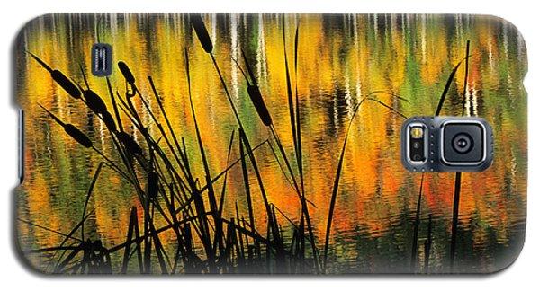 Owl Creek Pass Fall 3 Galaxy S5 Case