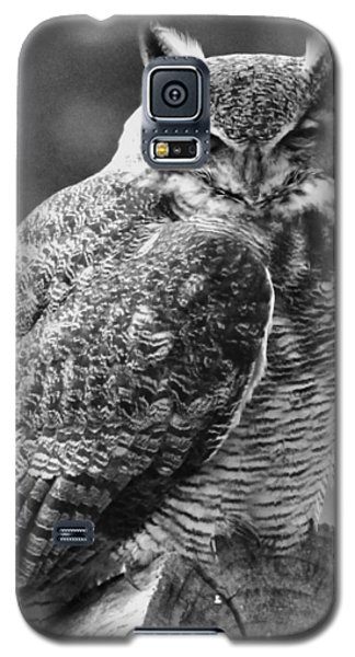 Owl In Black And White Galaxy S5 Case