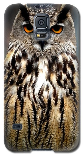 Owl Living In The Spanish Mountains Galaxy S5 Case