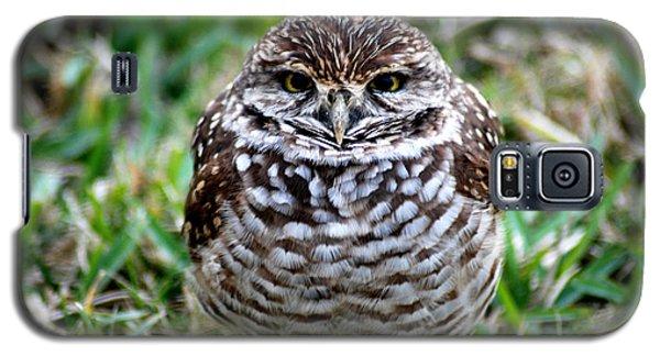 Owl. Best Photo Galaxy S5 Case