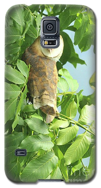 Galaxy S5 Case featuring the photograph owl by Rod Wiens