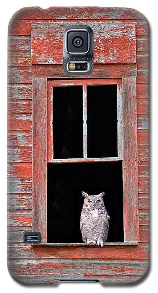 Owl Window Galaxy S5 Case