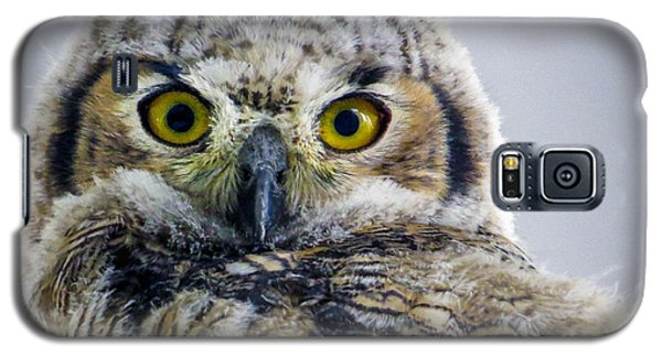 Owlet Close-up Galaxy S5 Case