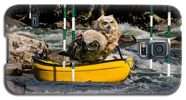 Owlets In A Canoe Galaxy S5 Case by Les Palenik