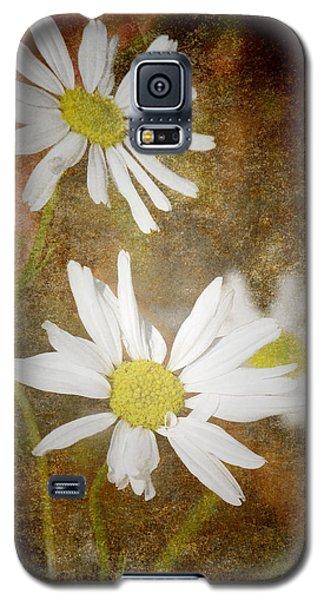 Ox Eye Dasies Galaxy S5 Case by Lynn Bolt