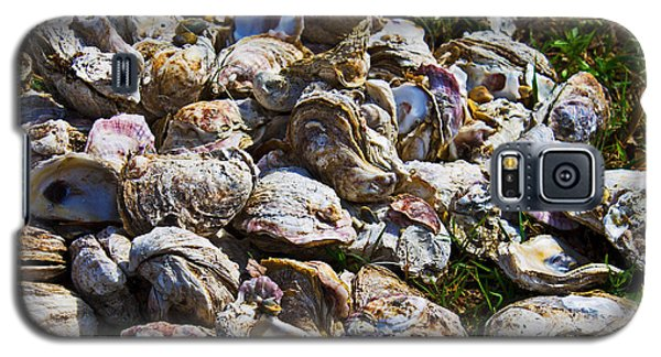 Oysters 01 Galaxy S5 Case