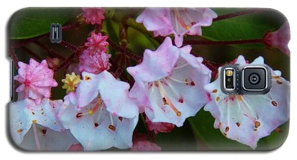 Galaxy S5 Case featuring the photograph Pa State Flower by Jeanette Oberholtzer
