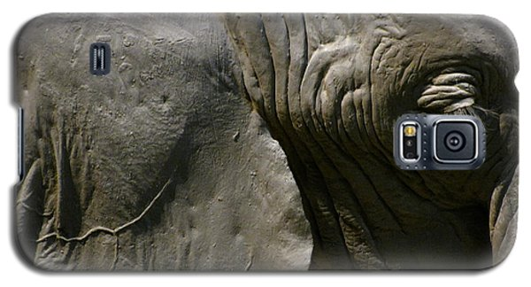 Galaxy S5 Case featuring the photograph Pachyderm by Jennifer Wheatley Wolf
