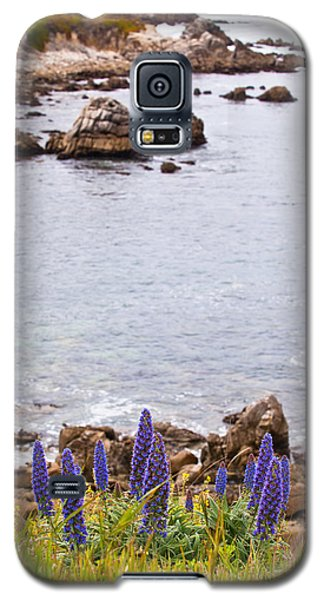 Pacific Grove Coastline Galaxy S5 Case by Melinda Ledsome