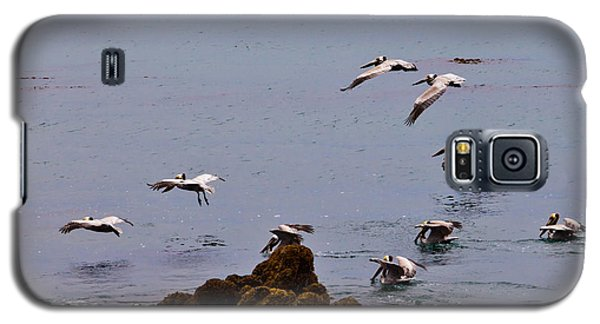 Pacific Landing Galaxy S5 Case