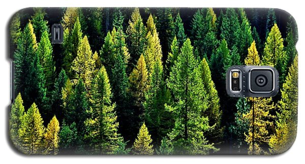 Galaxy S5 Case featuring the photograph Pacific Northwest Autumn by Benjamin Yeager