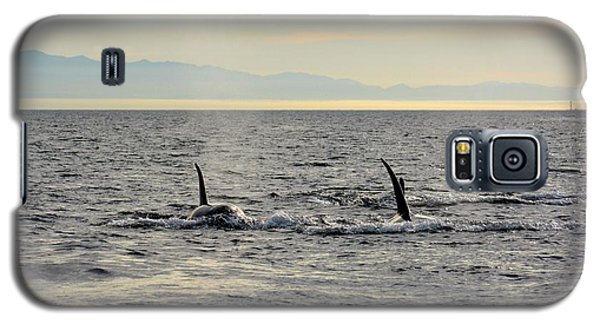 Galaxy S5 Case featuring the photograph Pacific Northwest Orcas by Gayle Swigart