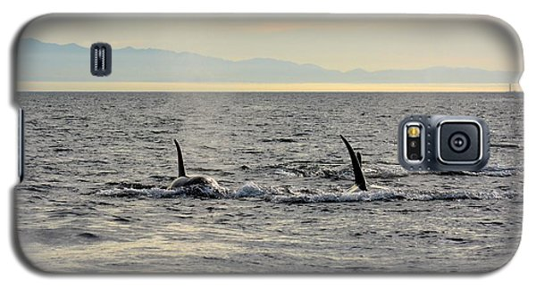 Pacific Northwest Orcas Galaxy S5 Case