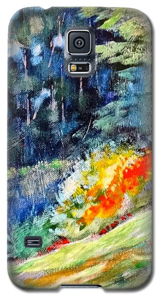 Pacific Nw Light #1 Galaxy S5 Case by Charles Munn