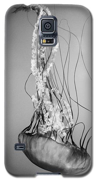 Pacific Sea Nettle - Black And White Galaxy S5 Case
