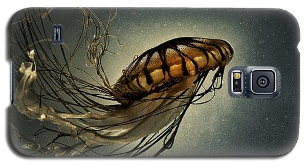 Galaxy S5 Case featuring the photograph Pacific Sea Nettle by Marianna Mills