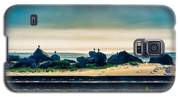 Padaro Lane  Galaxy S5 Case