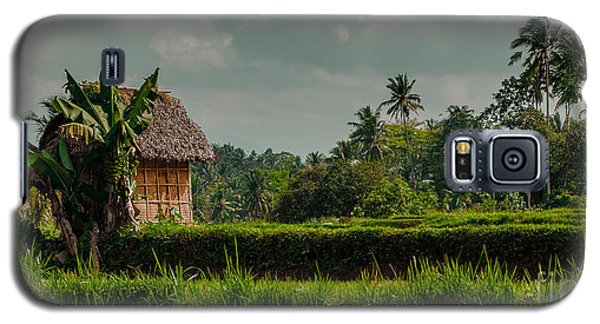 Paddy Fields Galaxy S5 Case
