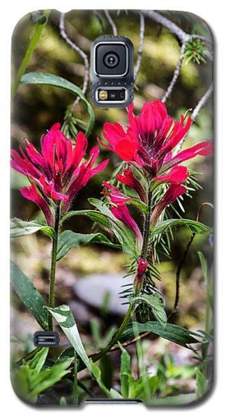 Paintbrush Galaxy S5 Case
