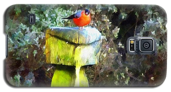 Painted Bullfinch S2 Galaxy S5 Case