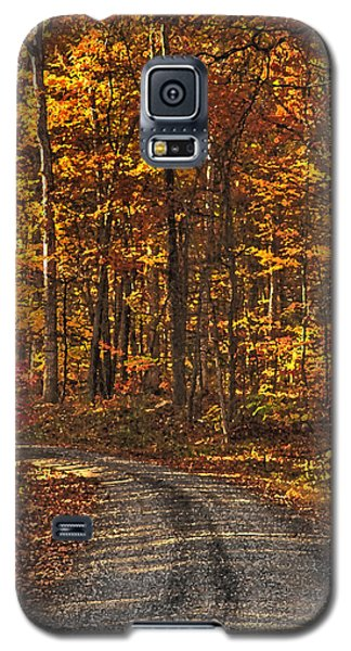 Painted Autumn Country Roads Galaxy S5 Case