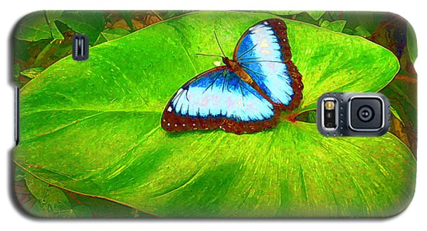 Galaxy S5 Case featuring the photograph Painted Blue Morpho by Teresa Zieba